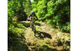 Mountain biking in Terceira island